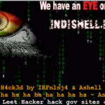 Indishell claiming to hack and Bring down 30  Pakistan government websites