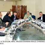USF BoD Meeting.  Rural Telephony and e-Services Projects  reviewed