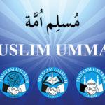 Blasphemy on social media: Muslim envoys unanimously decide to protect sanctity of Islam