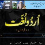 President Mamnoon to inaugurate Urdu digital dictionary on Wednesday